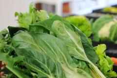 bioemozioni negozio montebelluna verdura biologica fresca
