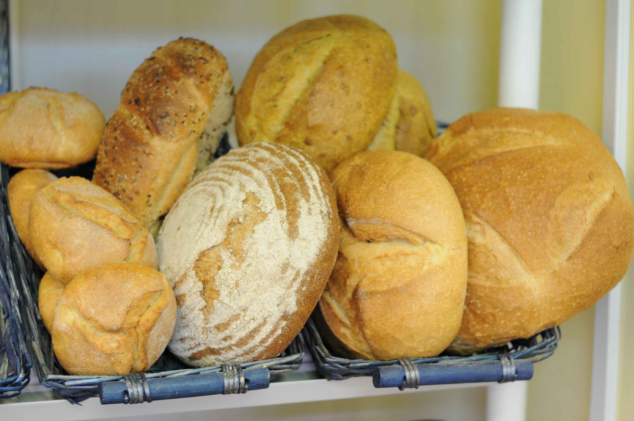 Pane fresco ogni giorno Biologico